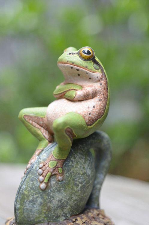 Chillin Frog