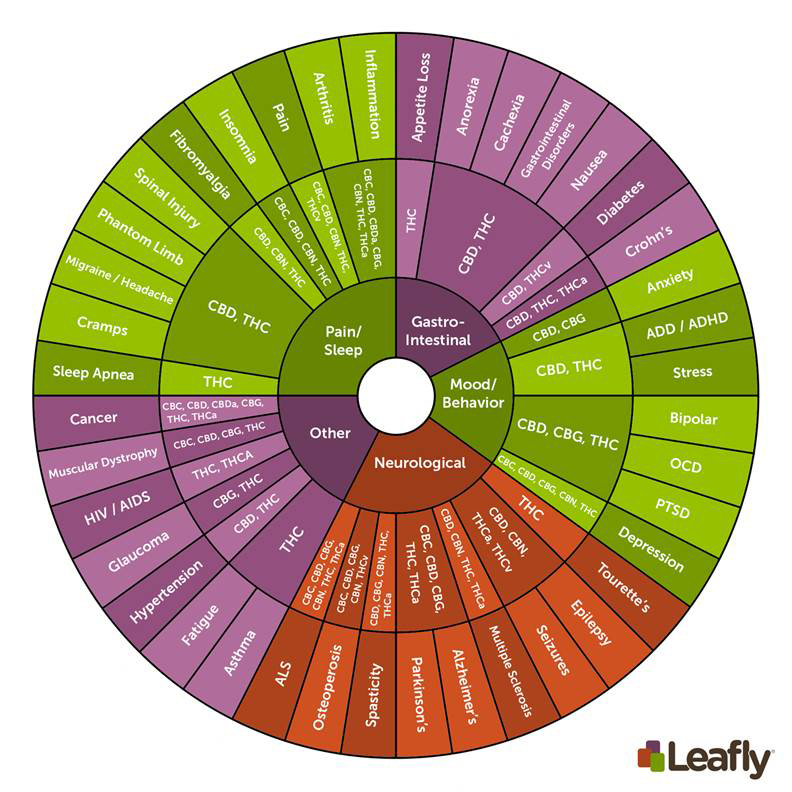 0kdqdunqr0gcxcmdfgbs_leafly-cannabinoid-wheel-large